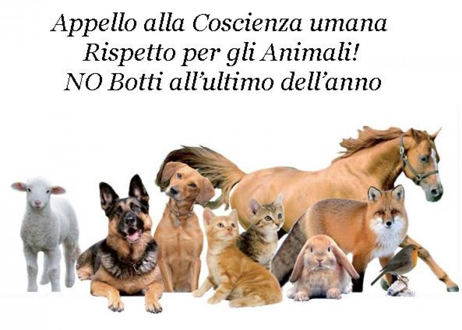 botti cani