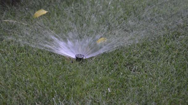 Limitazioni uso acqua per orti e giardini
